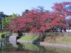 津軽出羽の紅葉・・庄内藩14万石の城下町、鶴岡をめぐります。