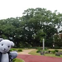 03川棚グランドホテルお多福を探検する~朝とクスの森編~