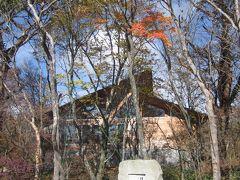 少し見頃が過ぎたかな?那須高原駒止の滝の紅葉と平成の森の紅葉は綺麗でしたよ。後編