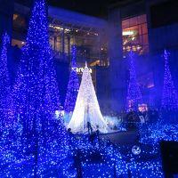 汐留のクリスマス 今年は青の世界に包まれます&今年で最後のミキモトのクリスマスツリー