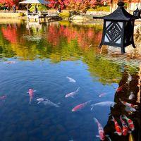 2014・紅葉彩る山陽道(広島県)をぶらりと巡る旅【1】〜広島の空の玄関口に隣り合う日本庭園・三景園へ〜