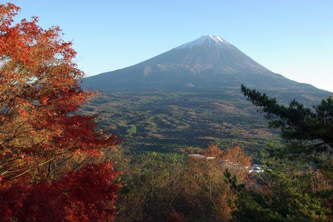 富士五湖を巡る国道139号線を走っていると、道の駅なるさわのそばに、ほとんど脇道のない国道にひょこっと「紅葉台」という標識と共に道が現れます。<br />名前が名前ですから、紅葉の名所だろうと、秋以外の季節には通り過ぎていた場所に、この秋、行ってみました。<br />富士山周辺は、すっかり観光開発が進んで、道路の整備も完璧ですが、この脇道は未舗装で、もうもうと砂埃を上げながら走り、乗馬体験牧場の前を過ぎると、ダートの山道になります。<br />ごつごつとした硬い路面は、ところどころ深くえぐれていて、4WDで良かったと思います。<br />ようやっと辿り着いた頂上には、ひとつだけ建物があり、その屋上からの眺めが最高でした。<br />目の前に富士山がど〜〜〜んと立ち、後ろに西湖、右手に本栖湖が見えます。<br />紅葉見物に来たのですが、紅葉以上に富士山の絶景ポイントでありました。