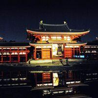 錦秋の京都旅行 (永観堂・哲学の道・嵐山・平等院)