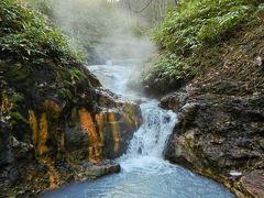 晩秋の北海道~登別の天然足湯と石狩挽歌