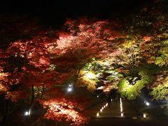 2014秋 京都夜間拝観(毘沙門堂)