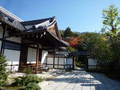 秋の京都ひとり旅②~皇室ゆかりの「谷の御所・霊鑑寺」秋季特別公開へ