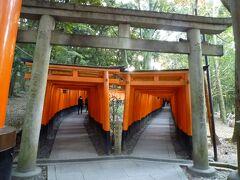 秋の京都ひとり旅①~朝7時の伏見稲荷&哲学の道~