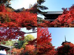 無料で楽しむ京都の紅葉♪今年のテーマはこれで決まり!【東福寺、今熊野観音寺、南禅寺、真如堂】