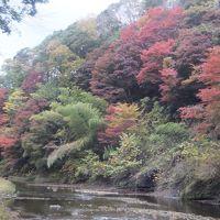 紅葉の養老渓谷と粟又の滝