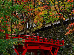 2014紅葉(7) 今年は違う横蔵寺の紅葉!!