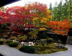 2014.11紅葉の京都へ役得出張旅行4-御寺 泉涌寺 御座所庭園のすばらしい紅葉!