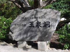ペットロス癒しの沖縄 1