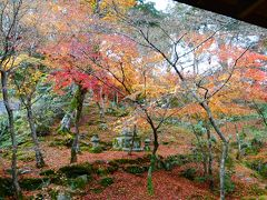 福岡の紅葉を見ようと、【大宰府の《光明禅寺》】に行って来たけど、紅葉の見頃がほぼ終わっていたのが残念なプチ日帰り旅(2014年11月)