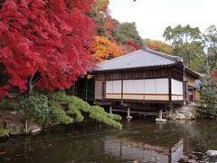 播州紅葉めぐり その2 龍野公園