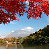 長浜城から三島池・徳源院へ、伊吹山の麓で紅葉めぐり