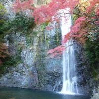 箕面の滝で紅葉狩り
