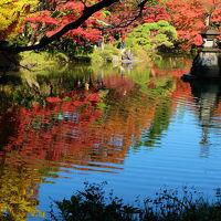 2014 日比谷公園 秋  中 雲が池を巡る