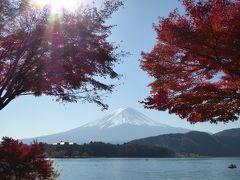 晩秋の伊豆と富士五湖の優雅な愛犬旅行♪ Vol11(第3日目午前) ☆河口湖:赤いモミジと白い富士山の競演♪