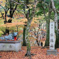 大威徳寺の紅葉 もう散っていました。