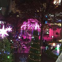 2014年イルミネーションを見に行こう!!!  第4弾 東京ドームシティのイルミネーションと庭のホテルのランチ