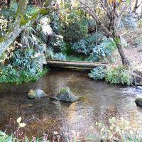 紅葉、武蔵野台地の湧水群めぐり