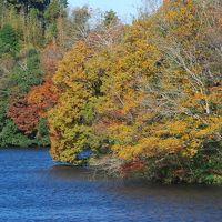 久留里線に乗って亀山湖の紅葉を訪ねる旅(千葉)