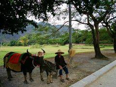 ~ベトナムハノイへ行ってみた~★入国3日目《ローカルな「世界自然遺産」現地ツアーに参加》★