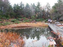 箱根仙石原でのオフ会に参加②箱根湿生花園を訪問