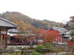 紅葉。期間限定雨天中止の長寿寺、切通を抜けて予想外に混んでいた海蔵寺(鎌倉26)