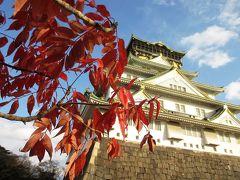 晩秋の大阪城公園、ことし最後の紅葉を見に行く