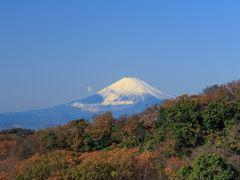 ハイキングと共に紅葉を楽しむ①~鎌倉天園ハイキングコース~