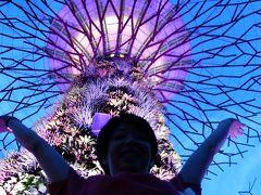 2013 GW Singapore(11)味香園甜品 と 福徳祠 と ガーデンズ・バイ・ザ・ベイ