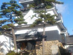 岡崎城と徳川家ゆかりの伊賀八幡宮と大樹寺