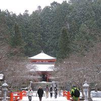 雪の高野山。立里荒神社への参拝を断念して、高野山奥ノ院から丹生都比売神社、慈尊院、丹生官省符神社と参拝してきました。