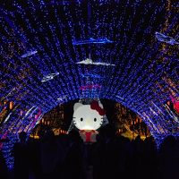 「土佐のほとけ」展と多摩センターイルミネーションを訪ねる旅(東京)