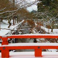 冬の高野山、氷点下の寺院巡り「前編」