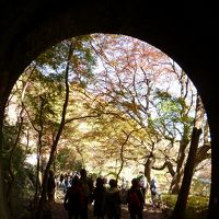 2014年秋『愛岐トンネル群と定光寺に行ってきました』