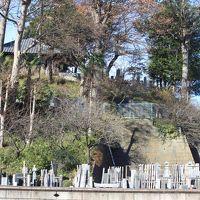 ハイキング 調布~町田・薬師池