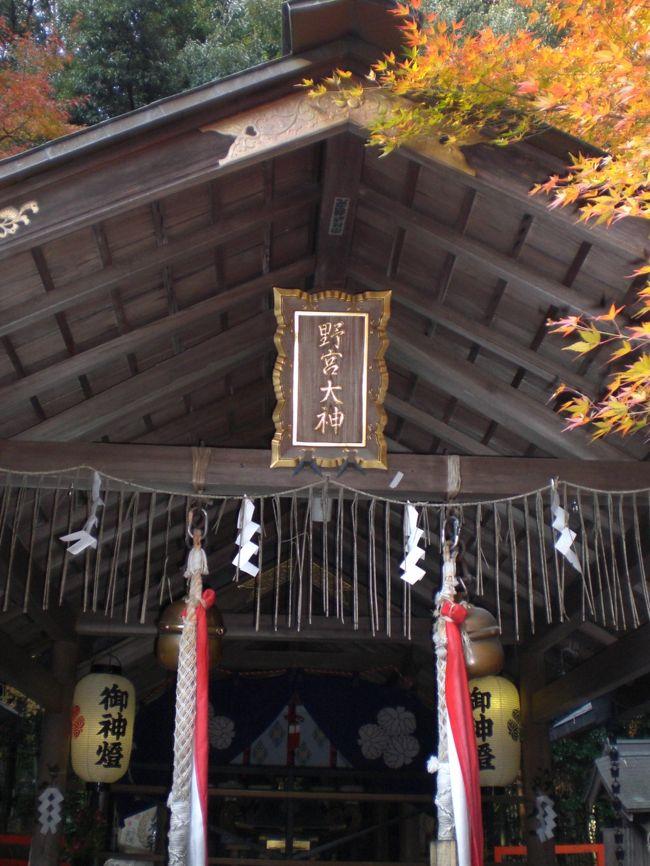 野宮神社をはじめとして嵯峨嵐山を散策しました。<br />野宮神社は、女性にゆかりのある神社のようで、昔、皇女や王女が皇室の代表として伊勢神宮に赴かれる際に、自らの身を清めるために参った神社と聞いています。縁結びや安産そして学問に関する願い事をかなえて貰うために訪れる方々が多いようです。<br />全体しては、それほど広くはない神社でしたが、たくさんの参拝客が訪れていました。<br />原木の樹の皮の付いた黒木の鳥居と狭い面積ではありましたが荘厳な感じのする苔庭が印象的でした。<br />以下、野宮神社から始まる散策について記して参りたいと思います。