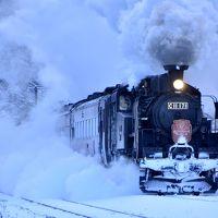 冬の北海道を巡る旅 ~「SLはこだてクリスマスファンタジー号」を追いかけて~