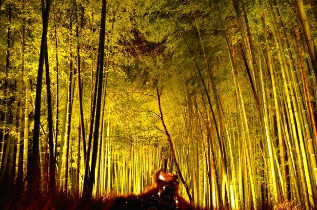 今年の旅納めは京都。<br />何となくhpを見ていて、何となく見付けた「京都・嵐山花灯路(はなとうろ)」。<br /><br />嵐山周辺で行われる冬のイベントで、今年で10回目を迎えます。<br />2014年は、12月12日(金)〜21日(日)の午後5時〜午後8時半。<br /><br />期待以上の美しさに感銘を受けた私。<br /><br /><br />来年の3月6日(金)〜15日(日)の午後6時〜午後9時半には東山周辺で同様のイベント「京都・東山花灯路」が予定されています。<br /><br />3月中旬は超の付く繁忙期。<br />でも、行きたいなあ。<br />行こうかなあ。