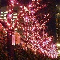 東京のクリスマスを駆け抜けました~(大げさ・・・)(*´▽`*)!!