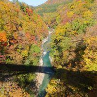 行きは日本海側を通行し帰りは本州中央部を通行しての16日間の旅
