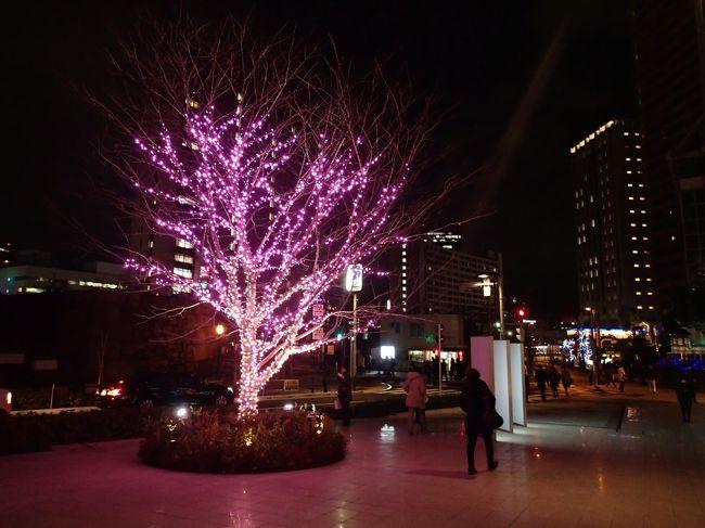 今年のクリスマスは神楽坂の高級焼肉店『翔山亭』で食事をすることにしました。<br /><br />午後2時ごろから数時間、満腹にならない程度に食べ歩きをしながら、神楽坂を散策。<br /><br />歩き疲れて焼肉食べて、締めは不二屋のケーキとペコちゃん焼きをお持ち帰り。