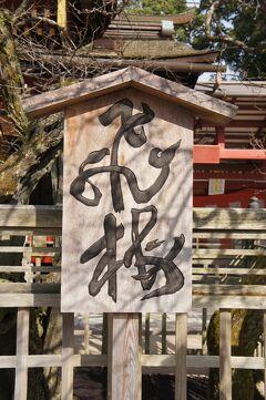 九州周遊4日間の旅(9)大村湾を越えて大宰府天満宮を参拝し、梅ヶ枝餅を食べながら福岡空港から帰路につく。