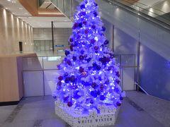 冬の札幌・旭川週末旅行☆ミュンヘンクリスマスマーケット・ホワイトイルミネーション♪