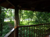 コスタリカ、サラピキで宿泊したSelva Verde Lodgeはジャングルの中に建つ広大な敷地の野生ホテル!