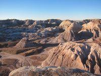 セドナとアリゾナ州ドライブ① 化石の森国立公園