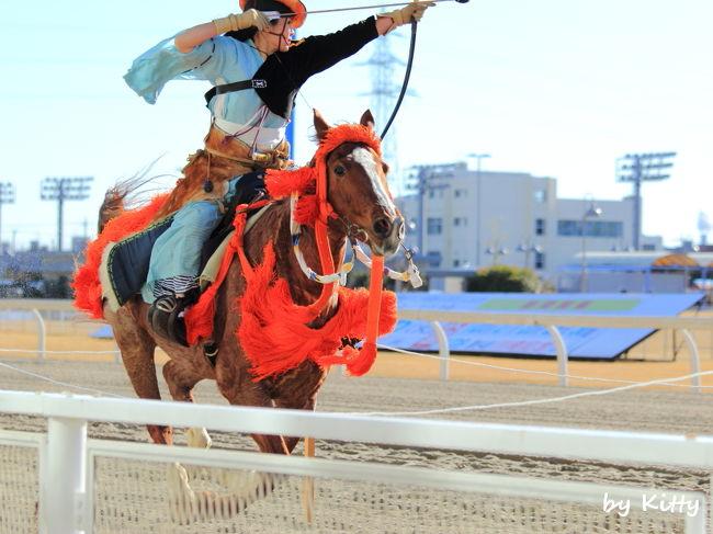 お正月だから、お正月っぽい日本の伝統行事から新年を始めたい♪<br />川崎競馬場で流鏑馬騎射式をやっているのを見つけたので見に行ってみた。<br /><br />昨年の10月に続き競馬場は2回目だけど、流鏑馬を見るのは初めて!<br />鎌倉時代の装束がカッコいい☆☆<br />騎射式は難しそうだけど上手く撮れるかなあ…?<br />そして騎射式の後には通常のレースもやってるみたいなので、また流し撮りにも挑戦。<br />前回よりは上手く撮れたかも!?<br /><br />地方競馬の川崎競馬場は東京競馬場よりさらにゆる〜い感じでのんびりできたし、馬も近くで見れるので撮影の練習には良い場所かも。<br />あとは大井競馬場で馬に乗る猫見たい♪<br /><br /><br />☆川崎競馬場↓<br />http://www.kawasaki-keiba.jp/