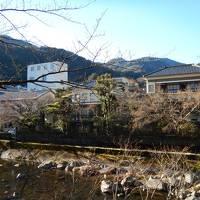 2015 箱根駅伝観戦と萬翠楼福住宿泊